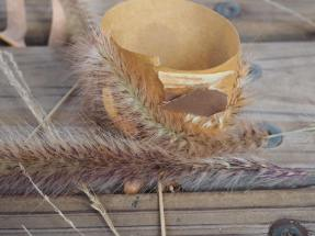winter nature crafts – Growing Green Thumbs