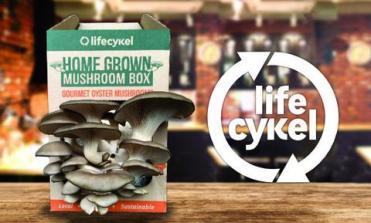Mushroom_Box_Advert_Image_45x30_large