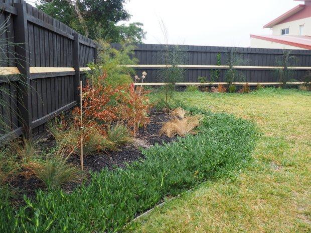suburban melbourne backyard non-climbing fence rails