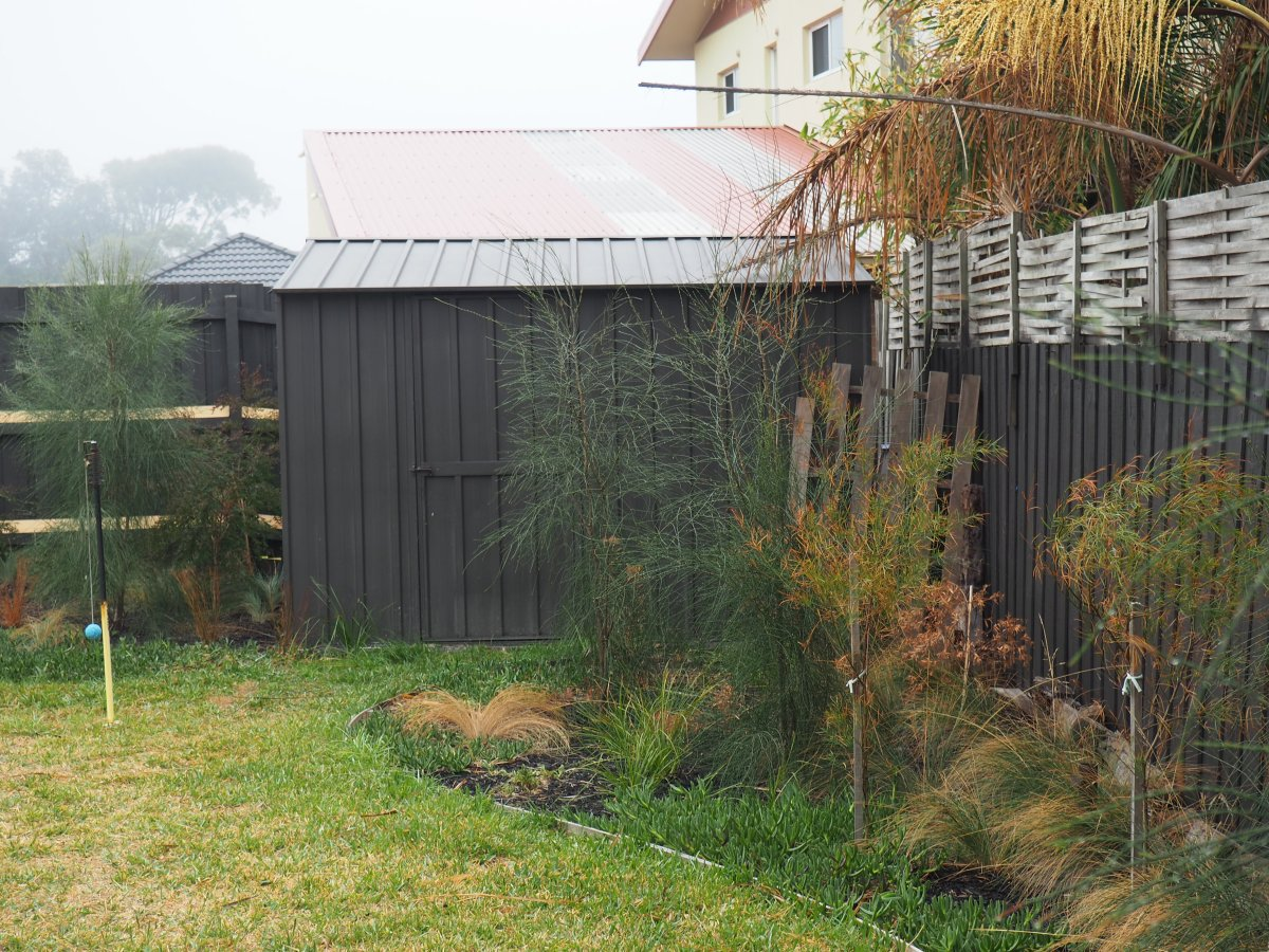 SUSTAINABLY LOCAL: an ordinary family living sustainably in Melbourne