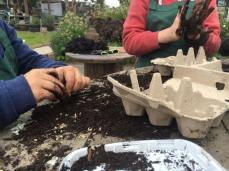 compost seed bomb workshop
