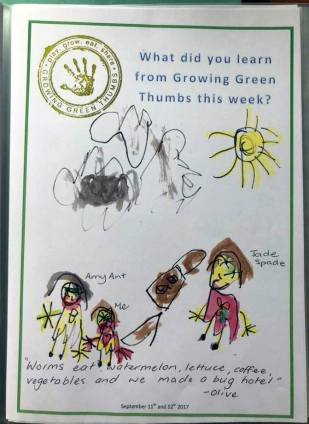 Edithvale kinder incursion - Little Wrigglers & Nature Detectives