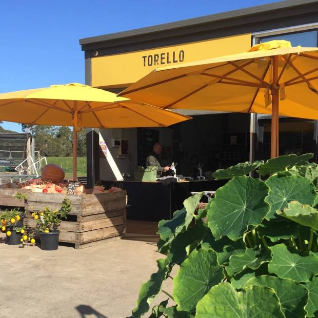 TORELLO FARM